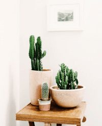 Guest Blog from Kara – Styling Small Spaces